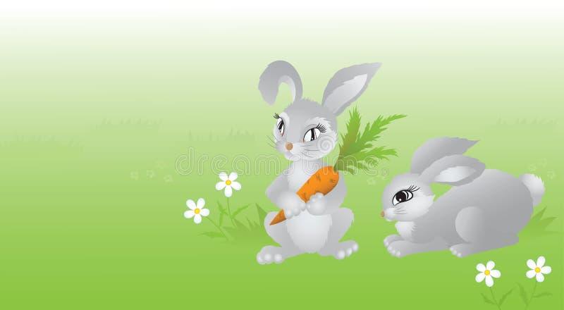 Twee konijnen op groene weide. vector illustratie