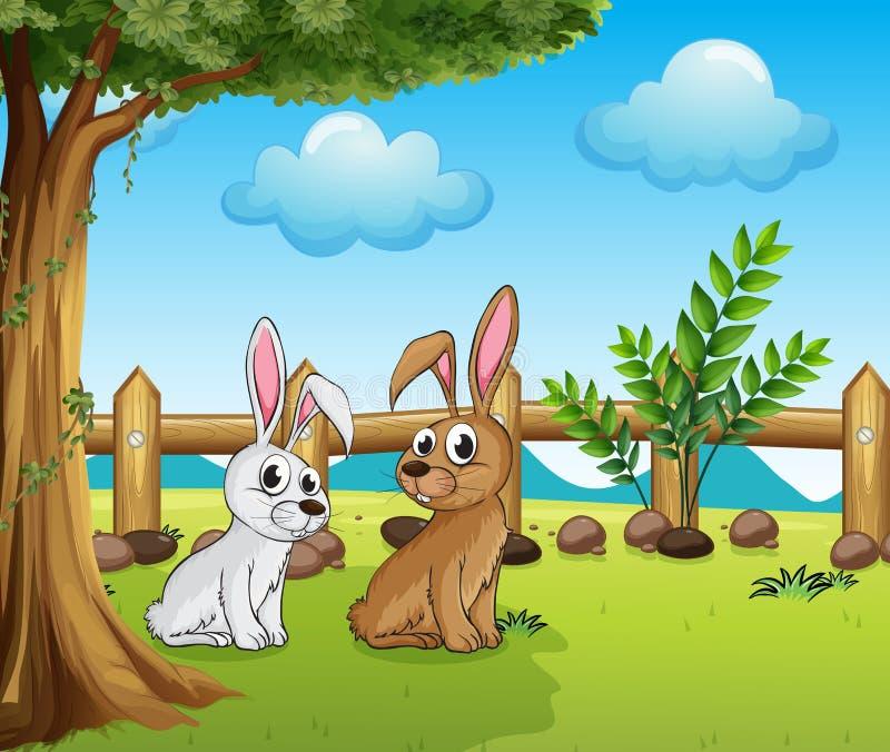 Twee konijntjes binnen de omheining royalty-vrije illustratie