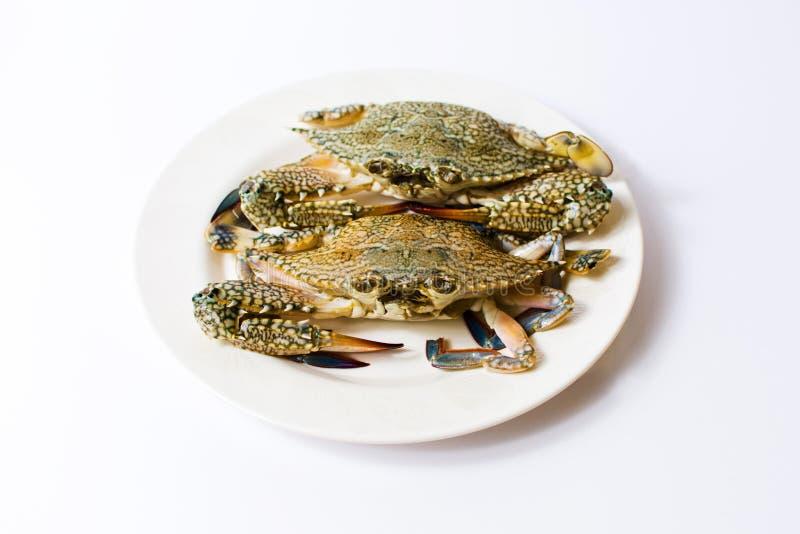 Twee krabben op een geïsoleerde plaat stock foto
