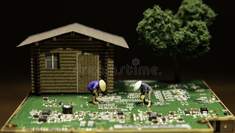 Twee landbouwers planten rijstzaailingen op kringsraad met over één logboekhuis en boom royalty-vrije stock afbeeldingen