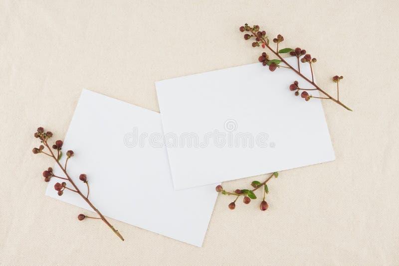 Twee lege witte die kaarten met ontluikende bloemen worden verfraaid stock foto's