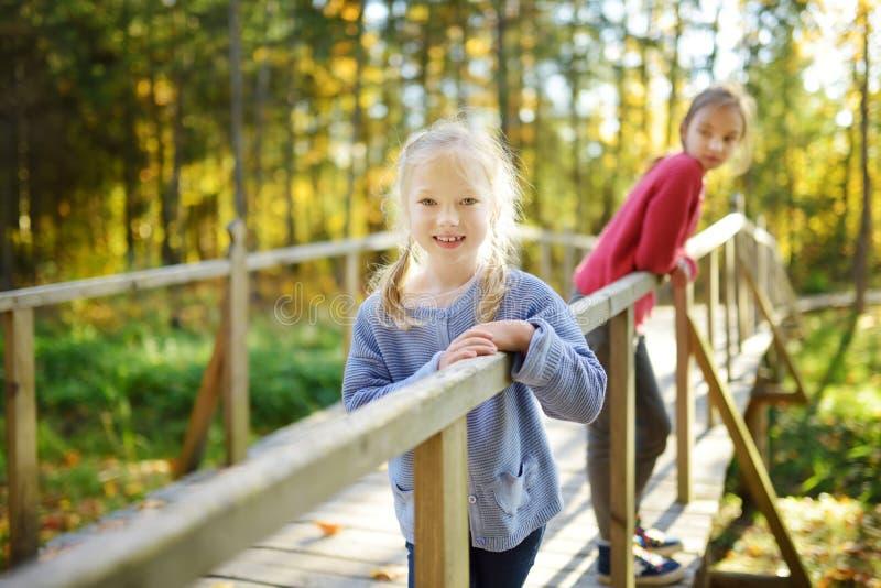 Twee leuke jonge zusters die pret hebben tijdens bosstijging op mooie de zomerdag Kinderen die aard onderzoeken Actieve familievr royalty-vrije stock foto's