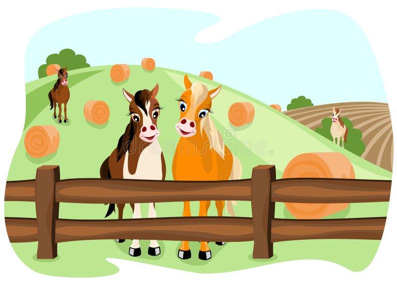 Twee leuke paarden op weiland royalty-vrije illustratie