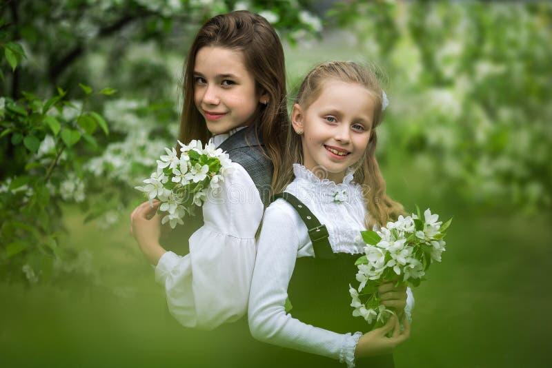 Twee leuke schoolmeisjemeisjes in een appel tot bloei komende tuin na school Eind van schooljaar stock fotografie