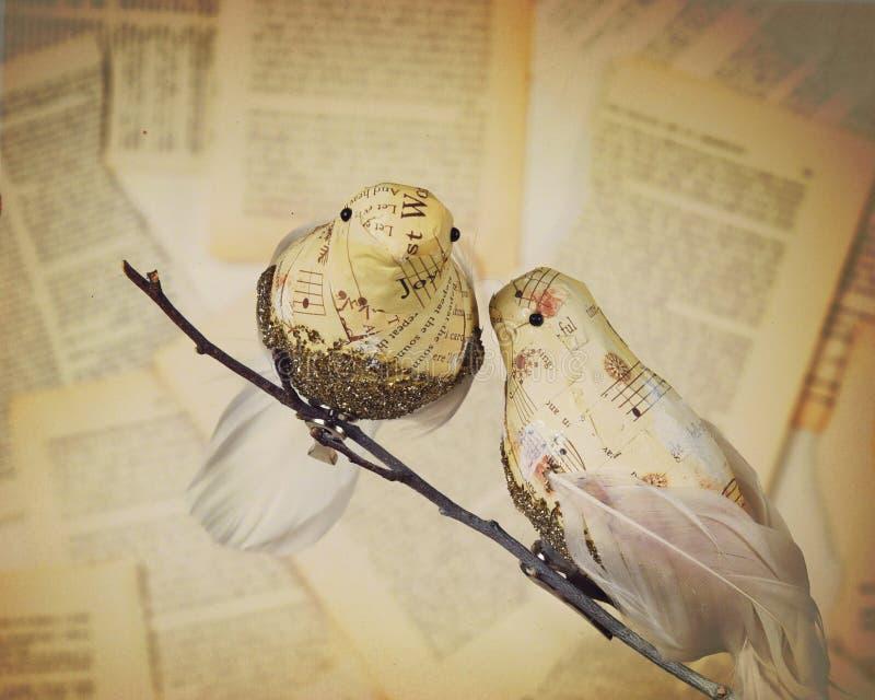 Twee Liefdevogels met Oud Uitstekend Document royalty-vrije stock foto's