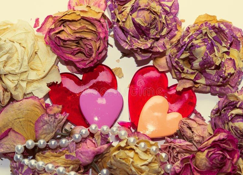 Twee liefjes en droge bloemen over witte bacground stock afbeelding