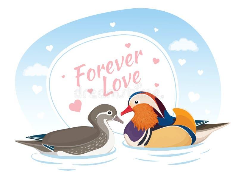 Twee Mandarin Eenden in Liefde Symbool van liefde en huwelijk Kaart voor valentijnskaartdag Voor altijd liefde Aziatische Vogels  vector illustratie