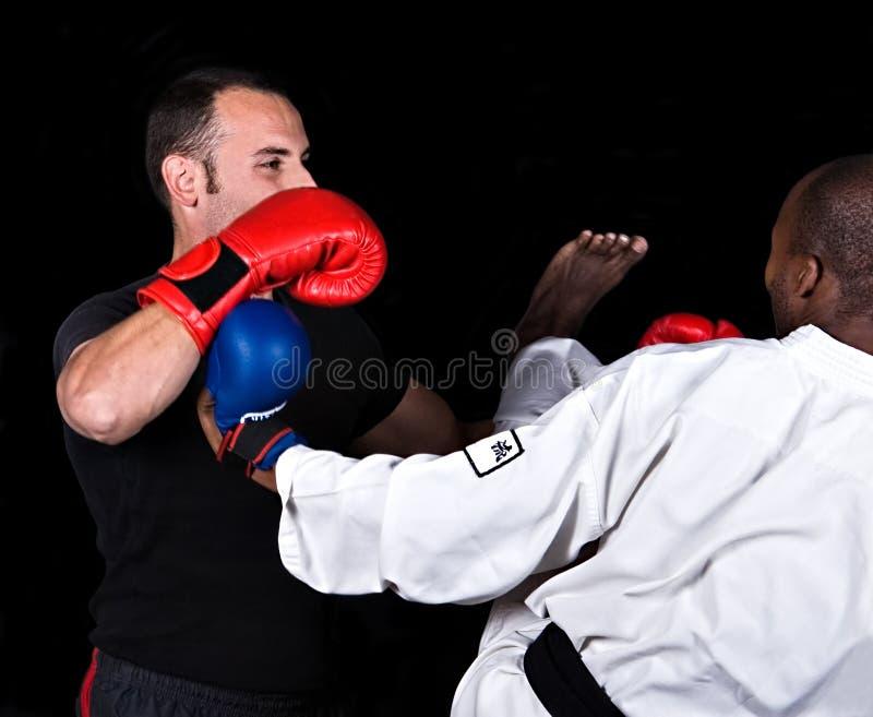 Twee mannelijke vechters stock foto's