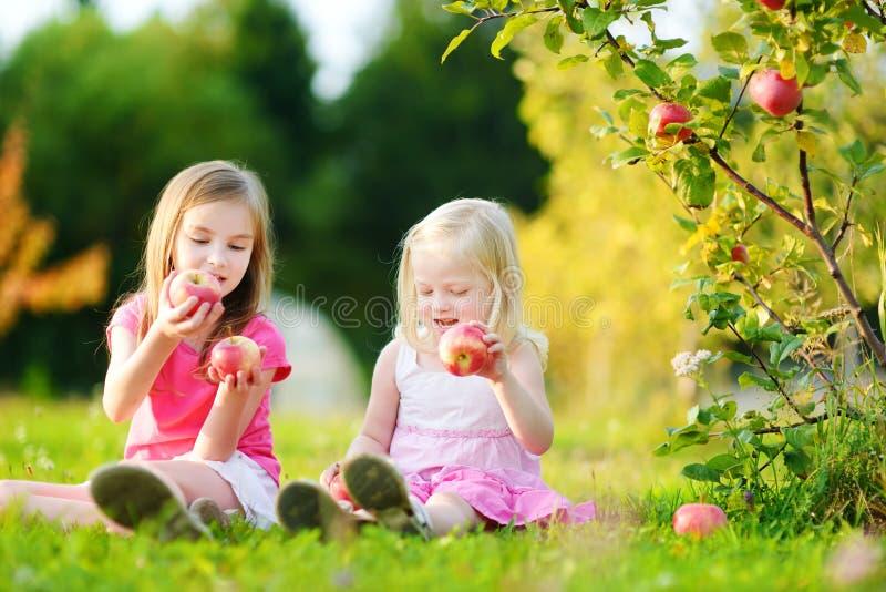 Twee meisjes die appelen in een tuin plukken royalty-vrije stock fotografie