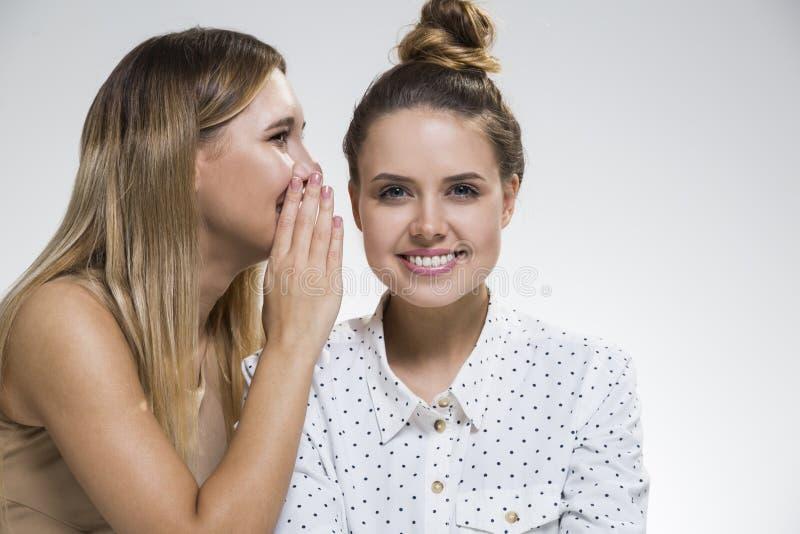 Twee meisjes die, is tevreden roddelen stock fotografie