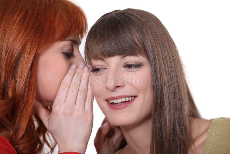 Twee meisjes het roddelen stock foto
