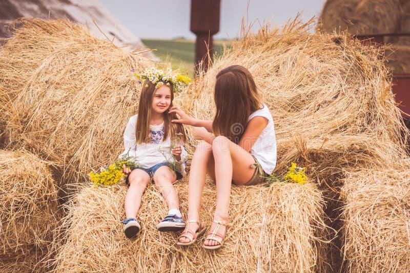 Twee meisjes op een gebied royalty-vrije stock fotografie