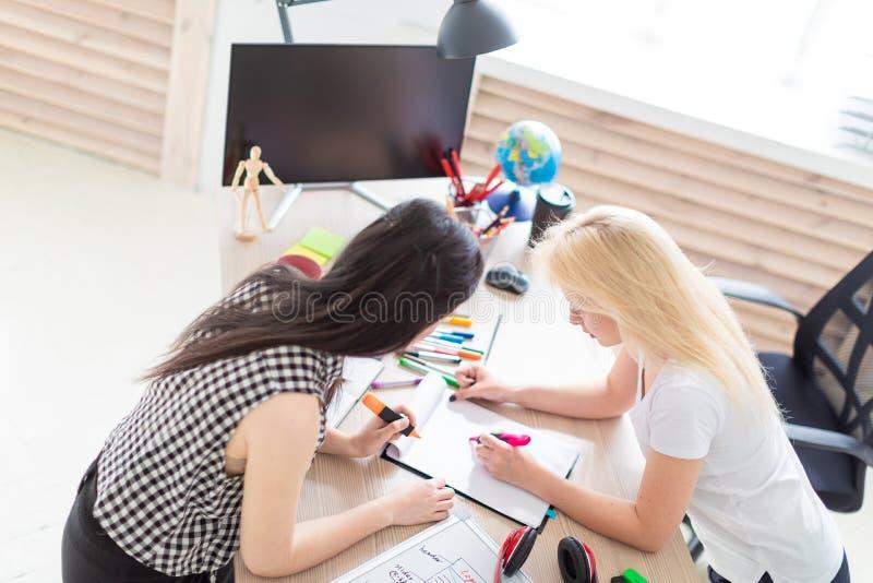 Twee meisjes werken in het bureau stock afbeelding