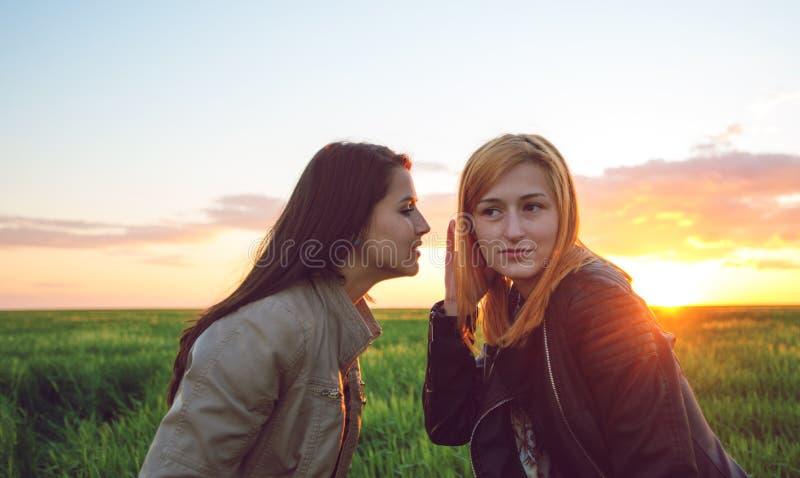 Twee meisjesvrienden die geheimen fluisteren stock afbeeldingen