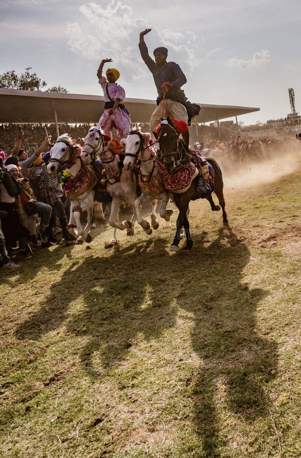 Twee mensen berijden vier paarden, zich bevindt op hun ruggen, aangezien zij rennen royalty-vrije stock afbeeldingen