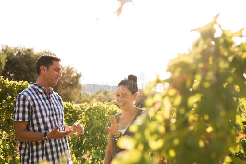 Twee mensen die een praatje in de wijngaarden hebben stock fotografie