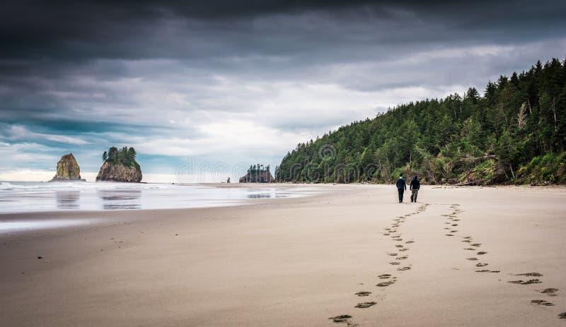 Twee mensen die op strand met voetafdrukken in het zand lopen stock foto's