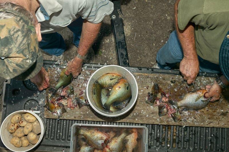 Twee mensen die vissen schoonmaken royalty-vrije stock foto