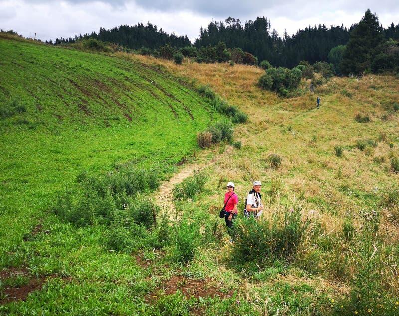 Twee mensen op de Natuurlijke Brug van Mangapohue lopen in Waitomo in de zomer stock foto