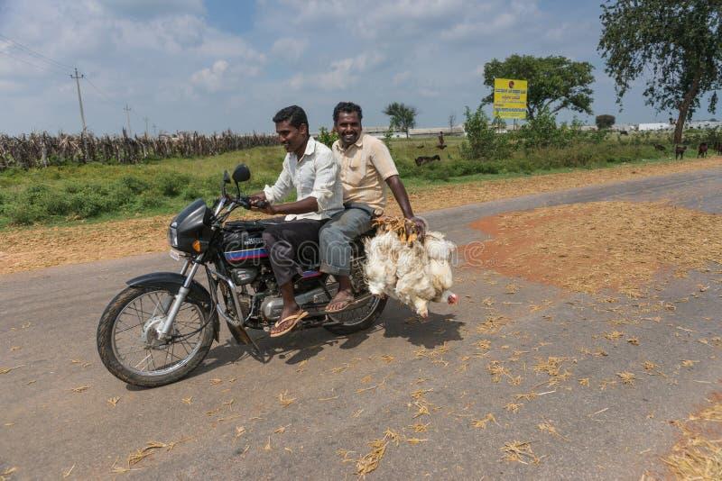 Twee mensen op motor die kippen, Mellahalli India vervoeren stock foto
