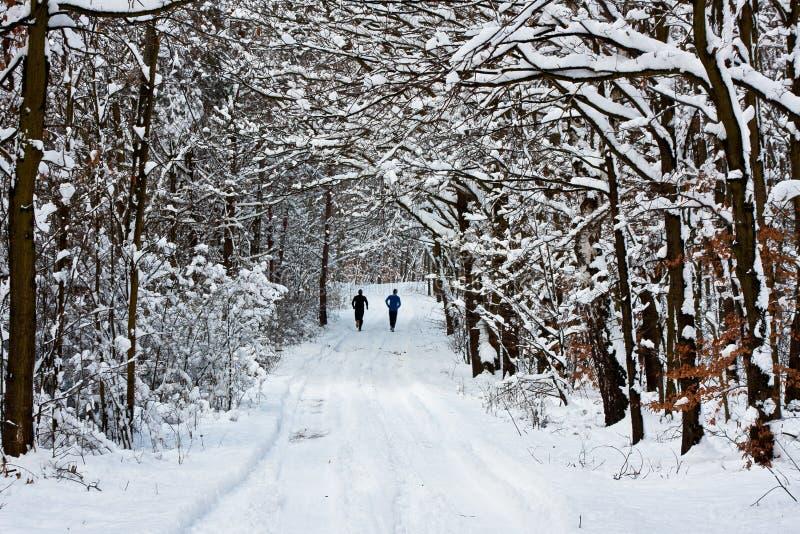 Het Aanstoten van de winter stock foto's