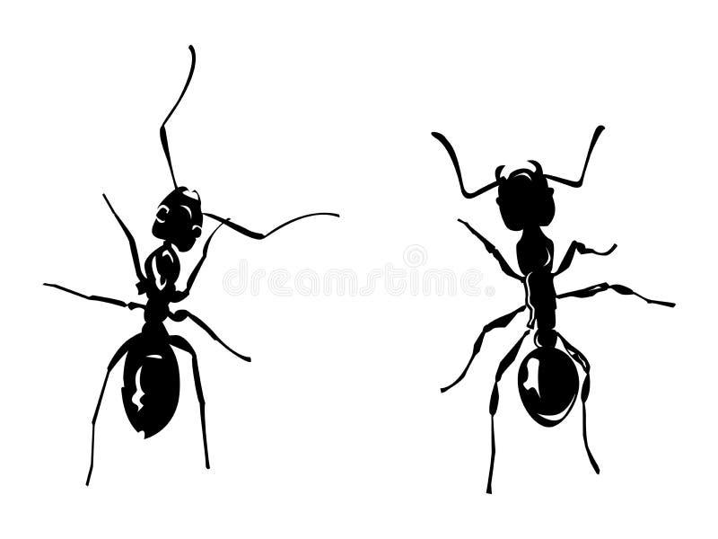 Twee mieren royalty-vrije illustratie