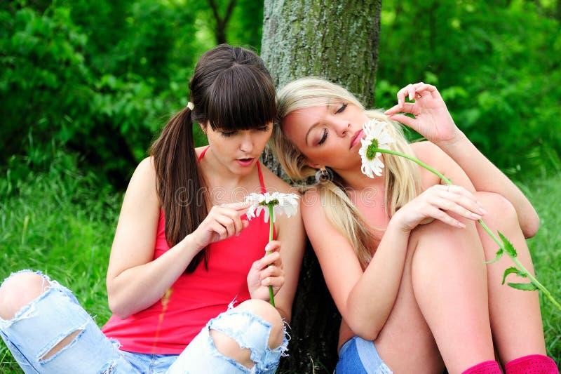 Twee mooie jonge vrouwenvrienden. stock foto's