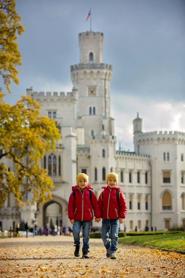 Twee mooie kinderen, jongensbroers, die op een weg in beaut lopen royalty-vrije stock afbeeldingen