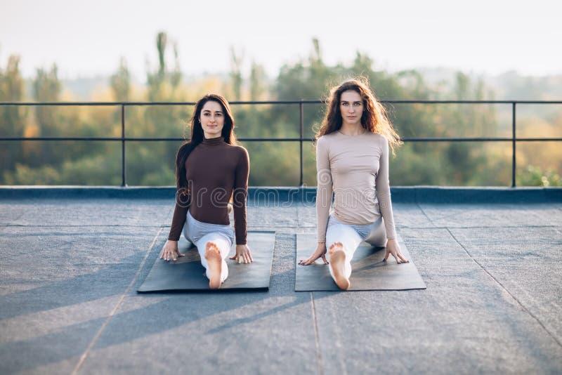 Twee mooie vrouwen die op aap zitten stellen op het dak, in openlucht royalty-vrije stock afbeelding