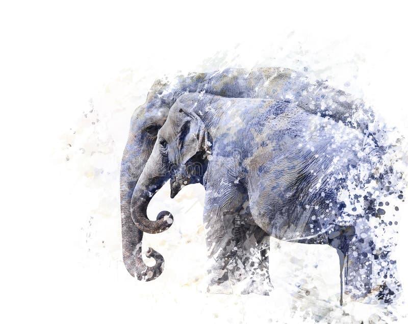 Twee olifantenwaterverf stock illustratie