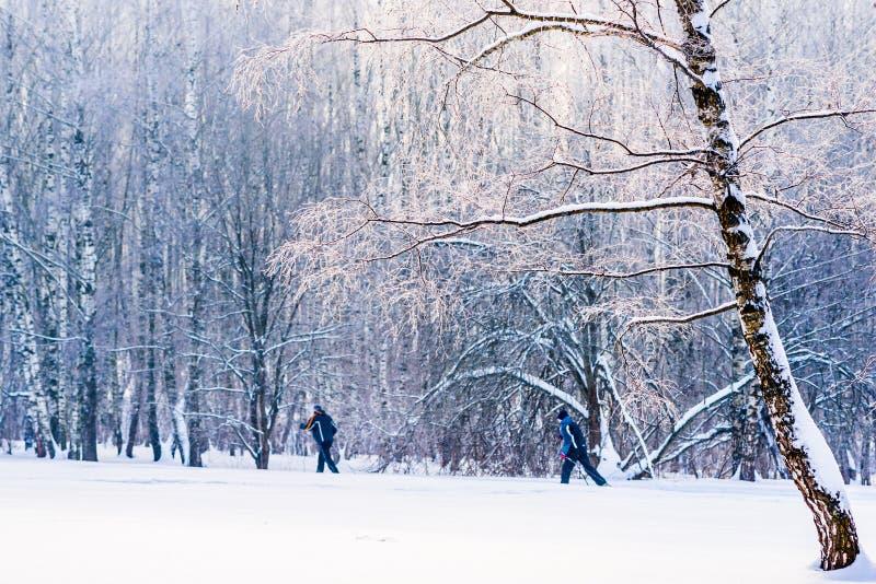 Twee onherkenbare personen gaan op ski langs voor stock foto's