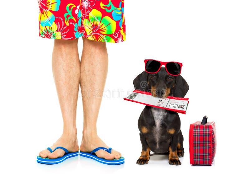 Twee op de zomervakantie, hond en eigenaar stock fotografie