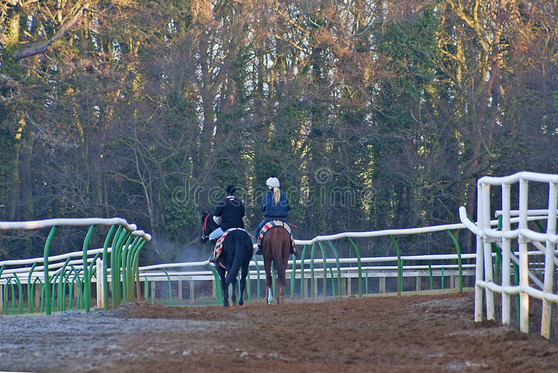 Twee paard achterruiter in koud weer stock afbeeldingen