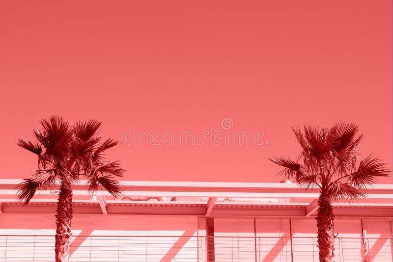 Twee palmen in een minimalistisch stedelijk die landschap in het leven koraalkleur wordt gestemd stock fotografie
