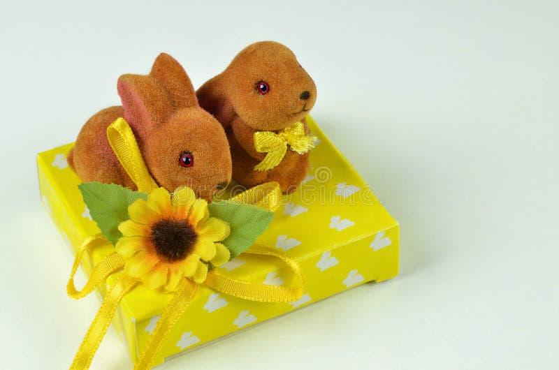 Twee Pasen konijntjes stock foto