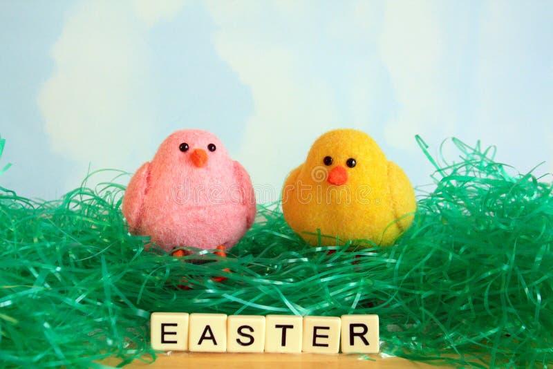 Twee Pasen-Kuikens die in groen Pasen-gras zitten royalty-vrije stock afbeeldingen