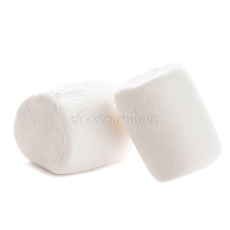 Twee Pluizige witte die heemstmacro over witte backgrou wordt geïsoleerd royalty-vrije stock afbeelding