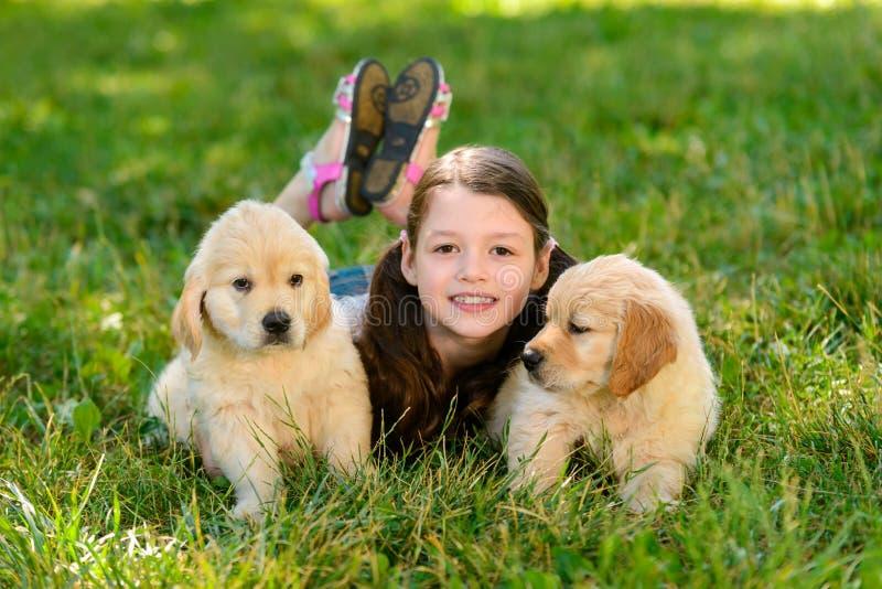 Twee puppy en meisje stock afbeelding