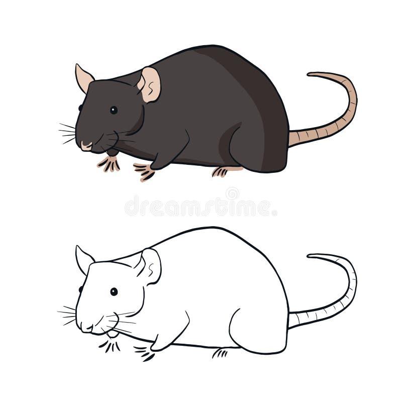 Twee ratten in eenvoudige stijl Rat in kleur op witte achtergrond Vectorillustratie van rattengoed voor ontwerpboek voor kinderen royalty-vrije illustratie