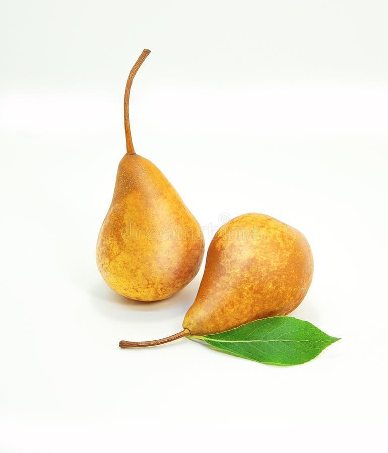 Twee rijpe smakelijke gele peren Gehele peren met het groene leven op een witte achtergrond royalty-vrije stock afbeeldingen