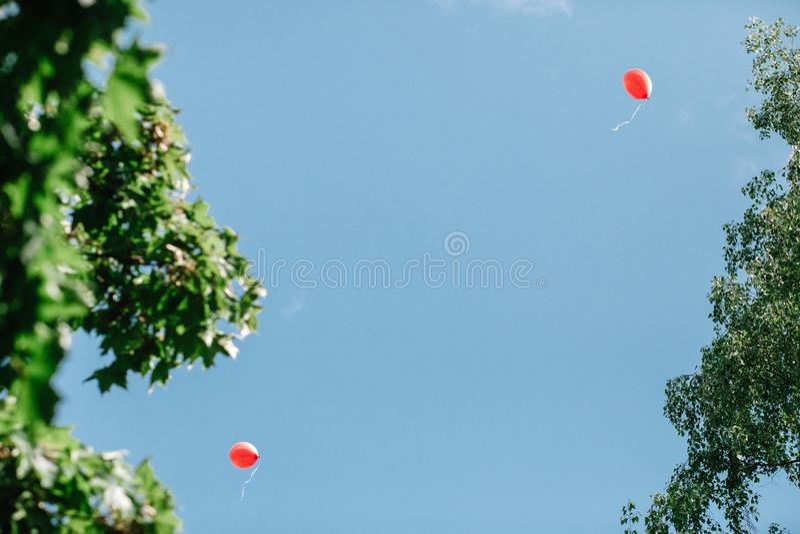 Twee rode ballons tegen een schone blauwe hemel die door takken van bomen met groen gebladerte wordt ontworpen Er is een plaats v stock fotografie