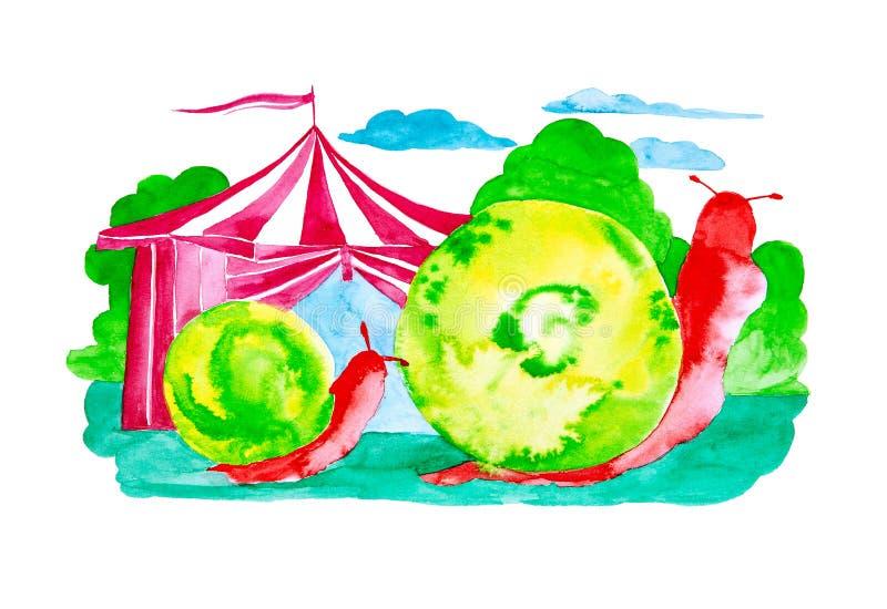 Twee rode slakken met groene shell kruipen in bos voorbij het circus Grappige die waterverfillustratie op witte achtergrond wordt royalty-vrije illustratie