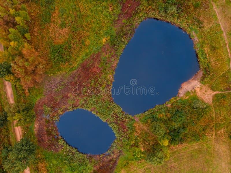Twee ronde meren, die op uitroepteken, naast de herfst vergelend bos lijken royalty-vrije stock foto