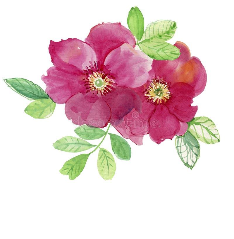 Twee roze rozen Het patroon van nam toe Huwelijkstekeningen stock illustratie