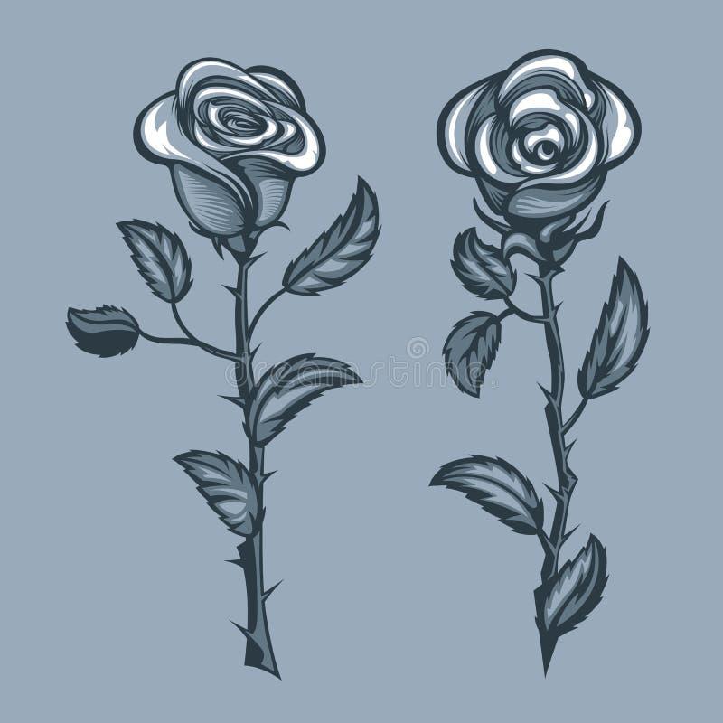 Twee rozen met doornen stock illustratie