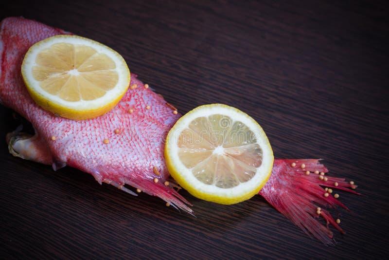 Twee sappige citroenplakken liggen op verse rode vissen De vis wordt genoemd overzeese baarzen stock fotografie