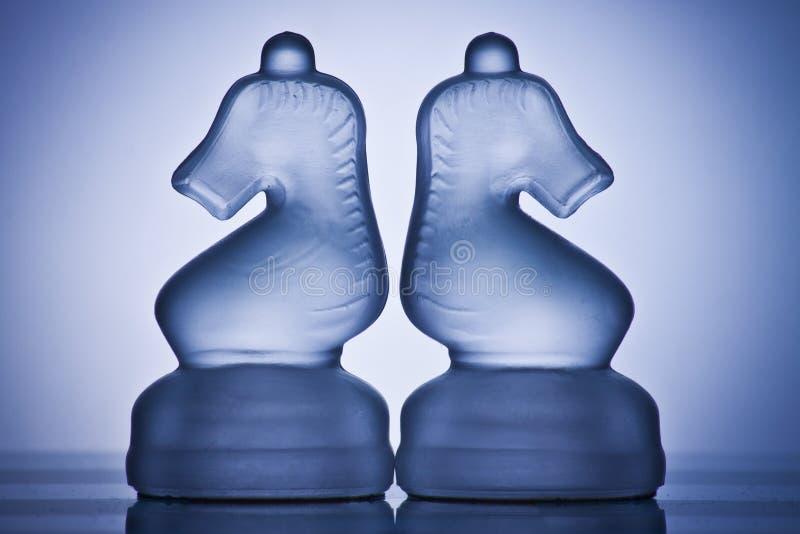 Twee schaakpaarden royalty-vrije stock fotografie