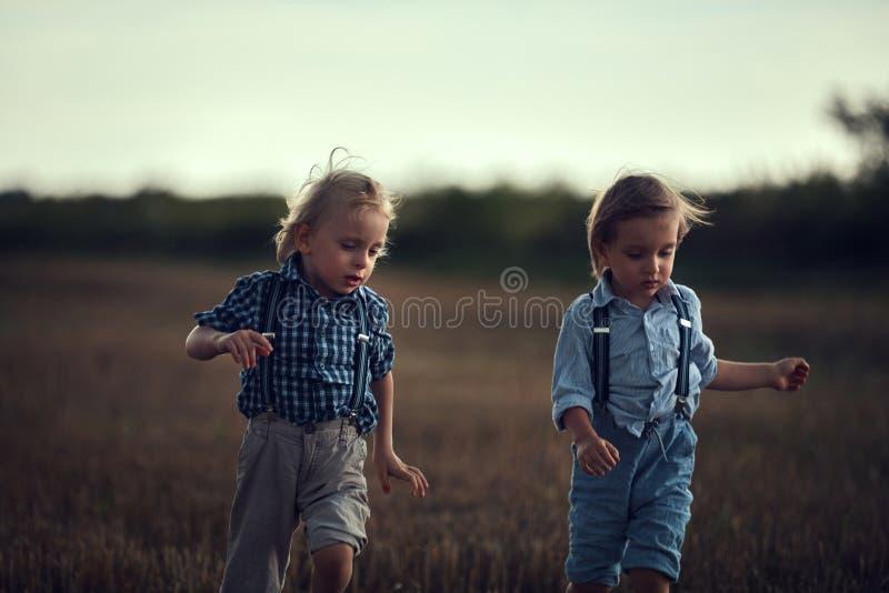 Twee schattige broers die plezier hebben op het platteland royalty-vrije stock afbeelding