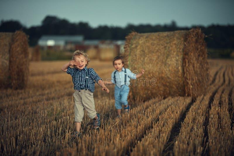 Twee schattige jongens die plezier hebben op het platteland stock afbeelding