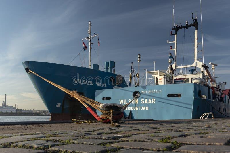 Twee schepen moord naast elkaar kade Rotterdam stock foto